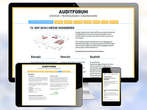 Webdesign: Auditforum.eu mit Typo3 CMS /  2018